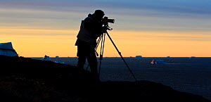 Photographer, Kai Jensen, silhouetted at sunset, photographing icebergs, Qeqertarsuaq, Disko Bay, Greenland, August 2009  -  Wild Wonders of Europe / Jensen