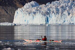 Man kayaking in front of the Eqi glacier, Greenland, August 2009  -  Wild Wonders of Europe / Jensen
