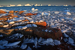 Ice on the coast with icebergs in the distance, Saqqaq, Greenland, August 2009  -  Wild Wonders of Europe / Jensen