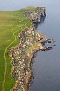 Aerial view of coastline, Grimsey, the Northernmost point of Iceland, June 2009  -  Wild Wonders of Europe / Carwardine
