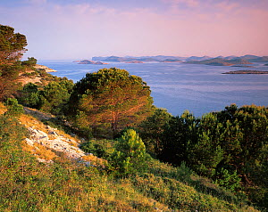 Levrnaka Island, Kornati National Park, Croatia, May 2009  -  Wild Wonders of Europe / Popp-Hackner