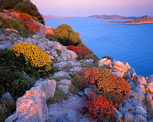 View from Mana Island south along the islands of Kornati National Park, Croatia, May 2009  -  Wild Wonders of Europe / Popp-Hackner