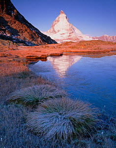 Matterhorn (4,478m) with reflection in ice on Riffel Lake, Wallis, Switzerland, September 2008  -  Wild Wonders of Europe / Popp-Hackner