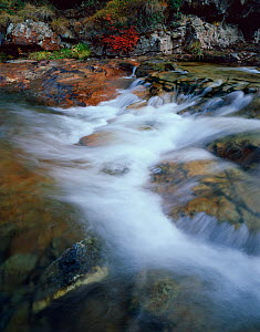 Stream, Ruisseau du Cot, near to Cirque de Troumouse, Pyren�es, France, October 2008  -  Wild Wonders of Europe / Popp-Hackner