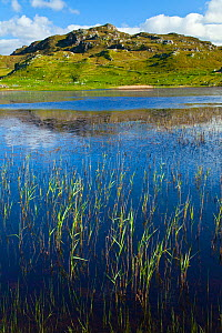 Dail Beag loch, Lewis, Outer Hebrides, Scotland, UK, June 2009 - Wild Wonders of Europe / Muñoz