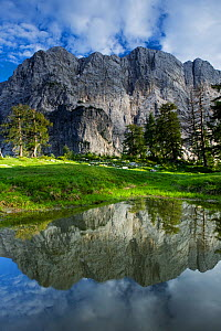 Mount Velika Mojstrovka (2,056m) reflected in a pool, viewed from Sleme, Triglav National Park, Julian Alps, Slovenia, July 2009  -  Wild Wonders of Europe / Zupanc