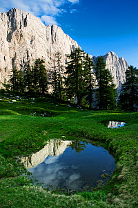 Mount Jalovec (2,645m) with reflection in a small pool, viewed from Sleme, Triglav National Park, Julian Alps, Slovenia, July 2009  -  Wild Wonders of Europe / Zupanc