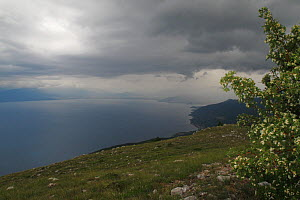 View of Lake Ohrid from Mount Baba, Galicica National Park, Macedonia, June 2009  -  Wild Wonders of Europe / Maitland