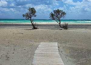 Elafonissi beach with wooden decking, Crete, Greece, April 2009  -  Wild Wonders of Europe / Lilja
