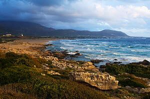 Coastline, Falassarna, Crete, Greece, April 2009  -  Wild Wonders of Europe / Lilja