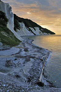 View from landslide at Store Taler towards Jydeleje Fald and Slotsgavlene at sunset, M�ns Klint, M�ns, Denmark, July 2009  -  Wild Wonders of Europe / Bartocha