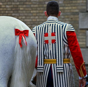 The traditional costume of a rider from La Maison Du Roy (the Royal House) of the Garde R�publicaine (Republican Guard), part of the French Gendarmerie, next to a Selle Fran�ais horse at the Caserne d...  -  Kristel Richard
