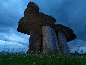 Poulnabrone Dolmen, a stoneage portal tomb, The Burren, County Clare, Ireland, June 2009 - Wild Wonders of Europe / Hermansen