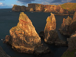 Rugged coast, Tory Island, County Donegal, Ireland, June 2009 - Wild Wonders of Europe / Hermansen
