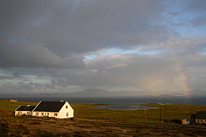 Houses on Tory island, County Donegal, Ireland, June 2009 - Wild Wonders of Europe / Hermansen