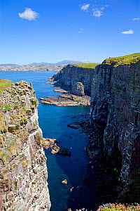 Seabird breeding cliffs, northern end of Handa Island, off the north west coast of Scotland, June 2009  -  David Kjaer