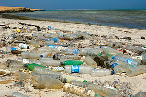 Plastic bottles and other debris washed up on beach. Gubal Island, Egypt, Red Sea. - Georgette Douwma