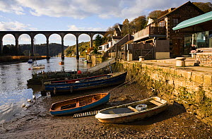Boats pulled up on small beach, with viaduct behind. Calstock, on the Tamar River, East Cornwall. November 2009.  -  Merryn Thomas
