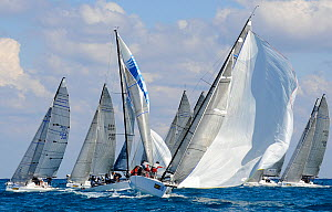 "Melges 32 fleet at the top mark, with ""Atlantica"" leading. Miami Grand Prix, Florida, USA. March 2010. - Rick Tomlinson"