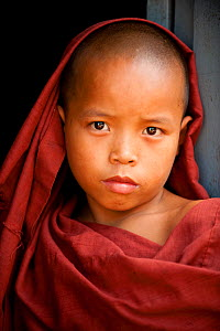 Portrait of a young monk in robes, Bago, Myanmar / Burma  August 2009  -  Inaki Relanzon