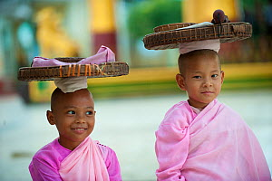 Two young Buddhist girl nuns wearing pink robes, carrying items on their heads, Bago, Myanmar, Burma. August 2009  -  Inaki Relanzon