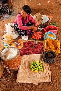 Woman with market stall, within Indein Village, Inle Lake, Shan State, Myanmar, Burma. August 2009  -  Inaki Relanzon