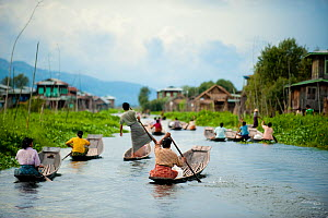 Traditional fishermen and women paddling in boats, in Inle Lake, Shan State, Myanmar (before Burma). August 2009  -  Inaki Relanzon