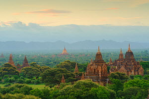 Temples in Old Bagan, UNESCO World Heritage, Mandalay State, Myanmar, Burma. September 2009  -  Inaki Relanzon