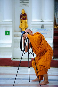 Buddhist monk taking photos in Shwedagon Paya, the most important buddhist place in all Myanmar, Yangon, Rangun, Myanmar, Burma. September 2009  -  Inaki Relanzon