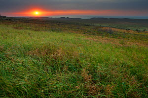 Steppe landscape at sunset, Bagerova Steppe, Kerch Peninsula, Crimea, Ukraine, July 2009 - Wild Wonders of Europe / Lesniewski