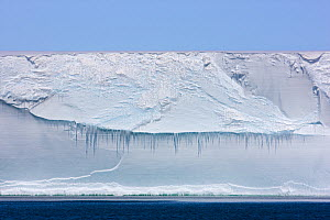 Ross Ice Shelf, Antarctica, December 2008  -  Sue Flood