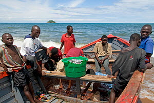 Fising boat and crew on Lake Malawi with basket of 'Usipa', small pelagic Cyprinid fish almost identidical to anchovy, Malawi March 2009 - Will Watson