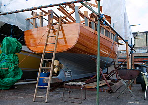 Wooden fishing boat under construction at the Underfall Yard, Bristol, England, UK, Oct 2009.  -  Toby Roxburgh