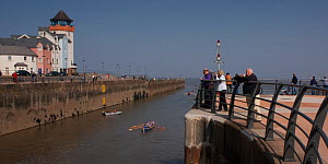 """Spectators watching Cornish gigs leaving Portishead Marina before the start of the 2009 """"Bristol River Challenge"""" race, during which crews row from Portishead to Bristol, ^^^travelling up the Avon Gor... - Toby Roxburgh"""