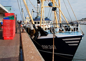 Beam trawler moored at Brixham Harbour to unload its catch, Devon, England, UK, 2009. - Toby Roxburgh