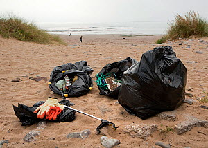 Sacks of litter, mostly plastics, collected by volunteers during an organised Beach Clean Up on Newton Beach, South Wales, UK, Tidy Wales Week, Sept, 2009. - Toby Roxburgh