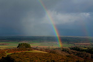 Looking north from summit ridge of Quantocks range of hills, towards Somerset Levels with rain shower and rainbow, Somerset, UK  -  John Waters