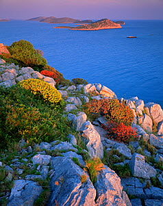 Coastal landscape, Kornati National Park, Mana Island, Croatia, May 2009 WWE BOOK  -  Wild Wonders of Europe / Popp-Hackner