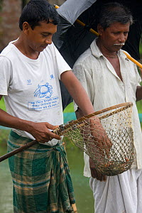 Men with crabs in net caught as part of a crab catching scheme initiated by an NGO to alleviate rural poverty, Uttaran, Ganges delta, Bangladesh, October 2008  -  David Woodfall