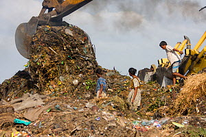 Children searching for recyclable objects in landfill site, Dhaka, Bangladesh, November 2008  -  David Woodfall