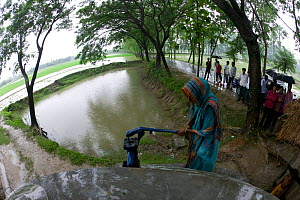 Woman pumping water at new well to obtain clean freshwater, shrimp monoculture has lead to salinisation of the original water sources, Ganges delta, Bangladesh, November 2008 - David Woodfall