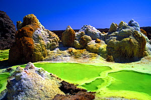 Dallol hot springs where water heated by magma laden with potassium, sulphur and iron spews up through salt pans staining the salt deposits with vivid colours, in the bottom of the Rift Valley, 120 me... - Chadden Hunter