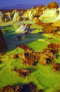 Aerial view of Dallol Hot springs, Danakil Desert, Ethiopia, November 2003,  Filming for the Mountains episode of BBC NHU tv series, Planet Earth Filming the origin of the volcanic forces that create...  -  Chadden Hunter