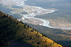 Silverberry River, Backbone Range, Mackenzie Mountains, Northwest Territories, Canada  -  Patricio Robles Gil