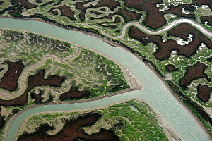 Aerial view of marshes with Seaweed exposed at low tide, Bah�a de C�diz Natural Park, C�diz, Andalusia, Spain, February 2009. - Wild Wonders of Europe / López