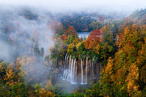 Veliki Prstavci waterfalls close to Gradinsko lake at dawn, Upper Lakes, Plitvice Lakes NP, Croatia, October 2008. Highly commended in GDT European Nature Photographer of the Year competition 2010. - Wild Wonders of Europe / Biancar