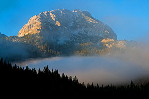 Big Bear peak with morning mist over forest, Durmitor NP, Montenegro, October 2008  -  Wild Wonders of Europe / Radisic