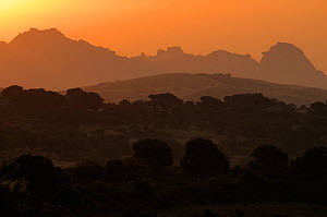 Granite hills at sunrise, Sardinia, Italy, June 2008  -  Wild Wonders of Europe / Widstrand