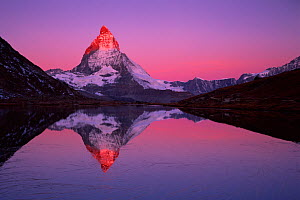 Matterhorn (4,478m) with reflection in Lake Riffel at sunrise, Switzerland, September 2008. WWE BOOK. WWE OUTDOOR EXHIBITION. NOT TO BE USED FOR GREETING CARDS OR CALENDARS TILL 2013 PRESS IMAGE. - Wild Wonders of Europe / Popp-Ha