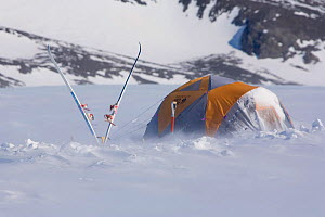 Mountain tent and skis in wind at Patriot Hills. Antarctica, January 2006.  -  Bryan and Cherry Alexander